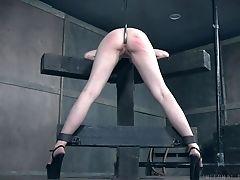 BDSM: 4579 Videos