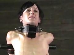 BDSM, Bondage, Brunette, Caning, Fetish, MILF, Petite, Punishment, Rough, Spanking,