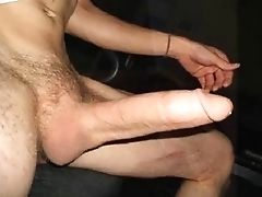 Pau Pequeno: 445 Vídeos
