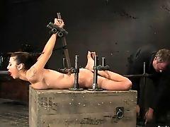 BDSM, Moaning, Princess Donna, Rough,