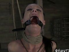 BDSM, Bondage, Fetish, Hailey Young, Punishment, Rough, Torture,