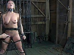 Bdsm, Fofa, Dia Zerva, Fetiche, Punição , Sexual, Submisso , Tortura ,